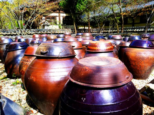 A bunch of kimchi pots on display at the folk village in Suwon